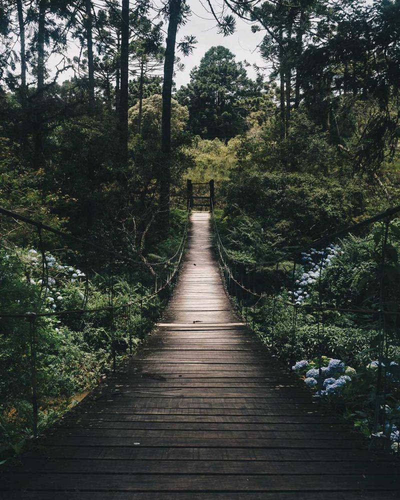 psychosociale-therapie-enschede-